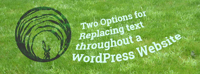 Two Options for Replacing text throughout a WordPress Website
